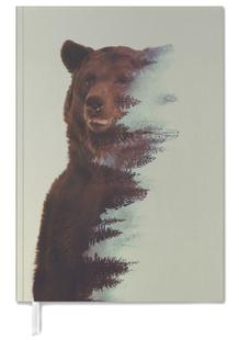 Observing Bear