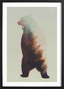 Norwegian Woods: Roaring Bear