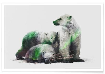 Artic Polar Bear Family