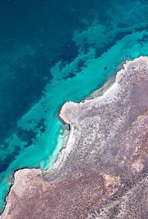 Shark Bay 9