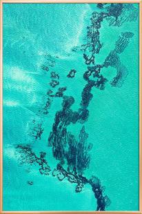 Shark Bay 13