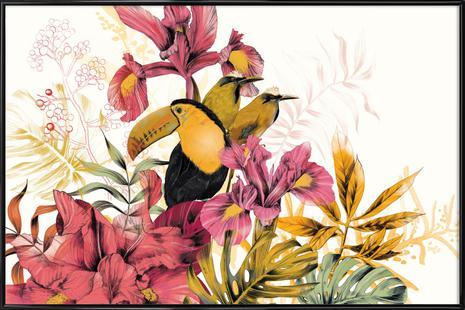 Tropical Garden Toucan