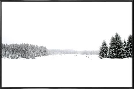 White White Winter