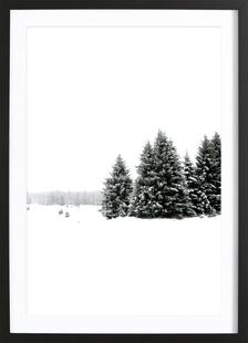 White White Winter 2/2