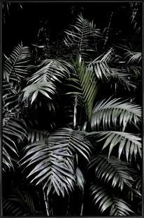 Tropical Garden 3/5