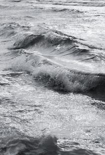 Take Me Surfing