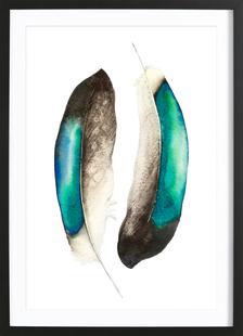 Feathers III