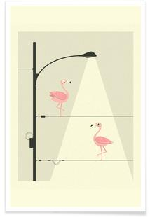 Flamingos on a Wire