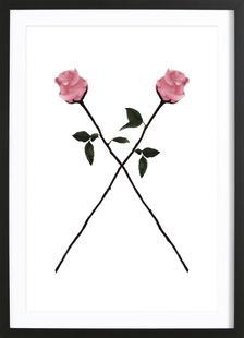 X-Rose