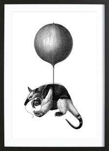 Anteater Balloon