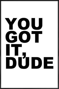 You Got It Dude