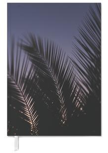 Palms 2