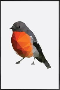 Geo Robin