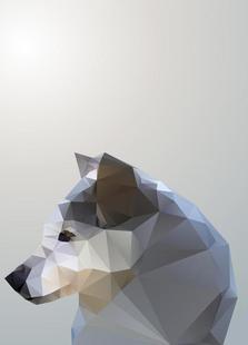 Geo Winter Fox