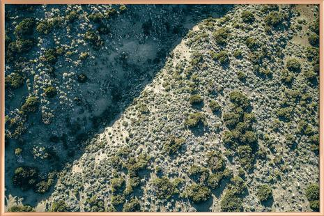 Teide Green