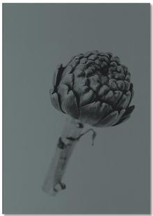 Artichoke Grey