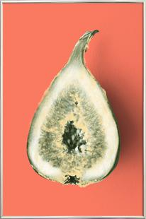 Ode aux Légumes - Fig