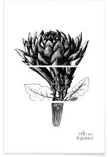 Ode aux Légumes - 1