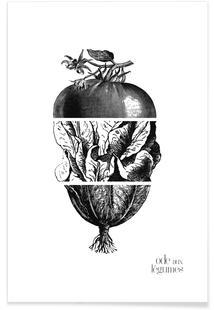 Ode aux Légumes - 2