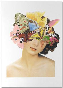 Het recht mooi te zijn - Butterflyhead