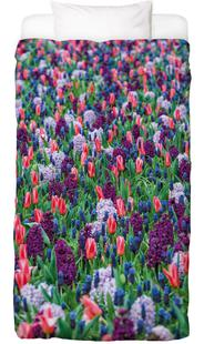 Tulip Field Purple