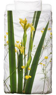 Flora - Gelbe Iris