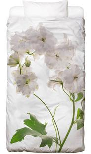Flora - Pfingstrose Weiß