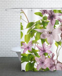 Flora - Clematis