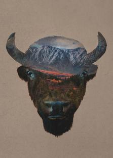 Bison Peak