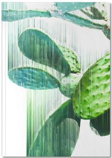 The Speed Of Cactus