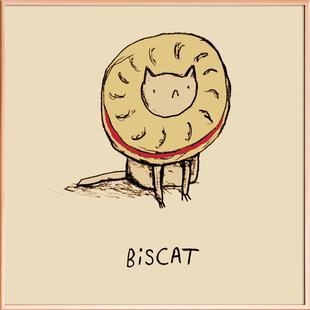 Biscat Big