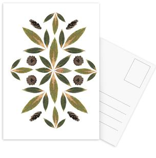 Pinecones and Leaves