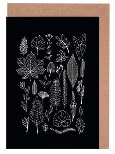 Herbarium Line Drawing Black