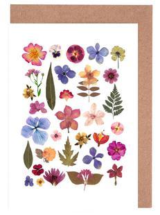Pressed Flowers 01