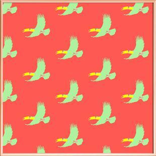 Soary Toucan