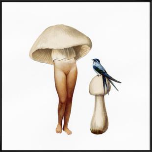 Ladyshroom