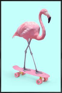 Skate Flamingo
