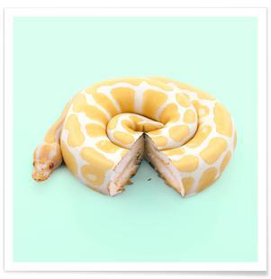 Snake Cake