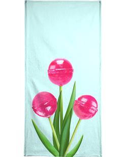 Lollipop Tulips 1