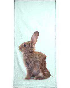 Chocolate Rabbit