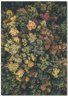 Tones of Autumn
