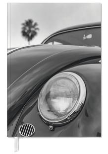 California Beetle