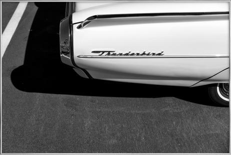 Monochrome Thunderbird