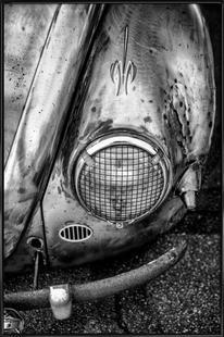 Silver Beetle