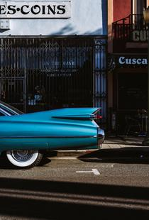Turquoise Fins