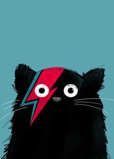 Cat - Hero 2