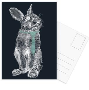 Fancy Rabbit