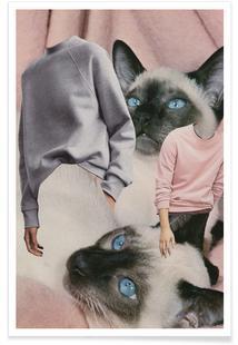 Siamese Sweaters