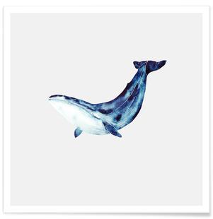Whale II