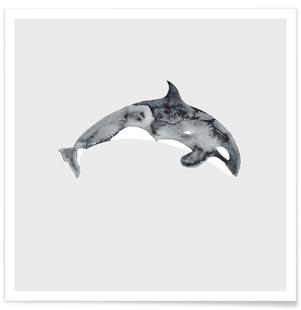 Whale III